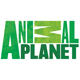 /publ/russkie/animal_planet_online_tv/2-1-0-157