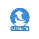 http://tv-one.at.ua/publ/russkie/chally_tv_online_ru_tv_tvc/2-1-0-1506