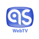 http://tv-one.at.ua/publ/other/albania/albanian_screen_online_tv/22-1-0-358