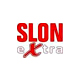 /publ/other/bosnija_i_gercegovina/tv_slon_extra_tv_online/34-1-0-934